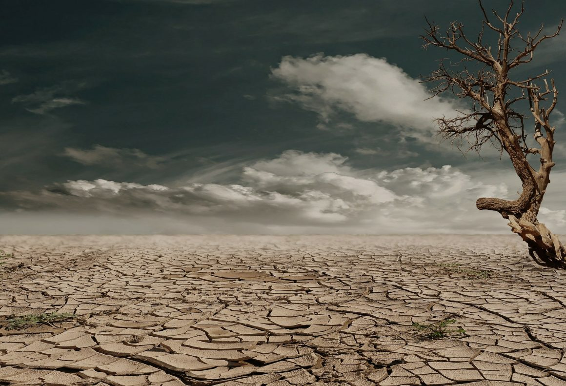 combatir la escasez del agua